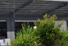 Beaumaris TAS Wire fencing 20